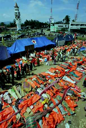 Bodies of victims of the tsunami in Banda Aceh on December 27, 2004